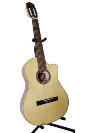 Guitarras Acústicas Serie GS