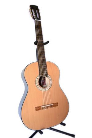 Guitarras Acústicas Serie GB